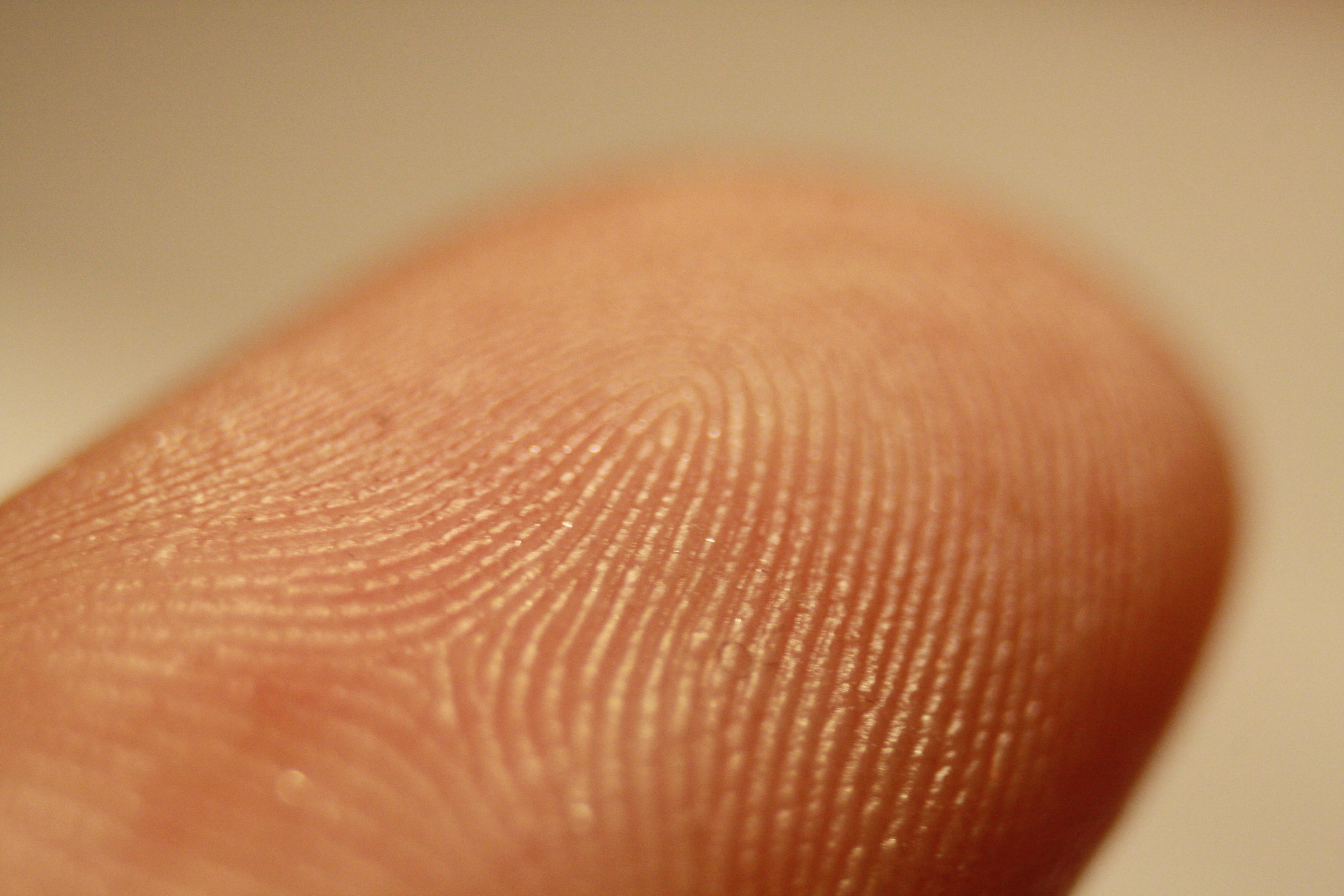 Logran determinar si una huella dactilar pertenece a un hombre o a una mujer