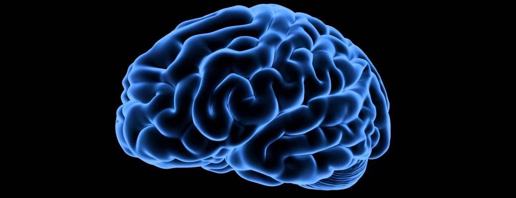impresión 3D cerebro mitos creatividad