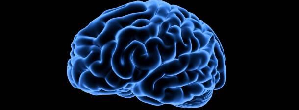 La estimulación eléctrica del cerebro como medio para rejuvenecer la memoria