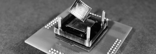 Los chips basados en neuronas biológicas quieren desafiar la ley de Moore