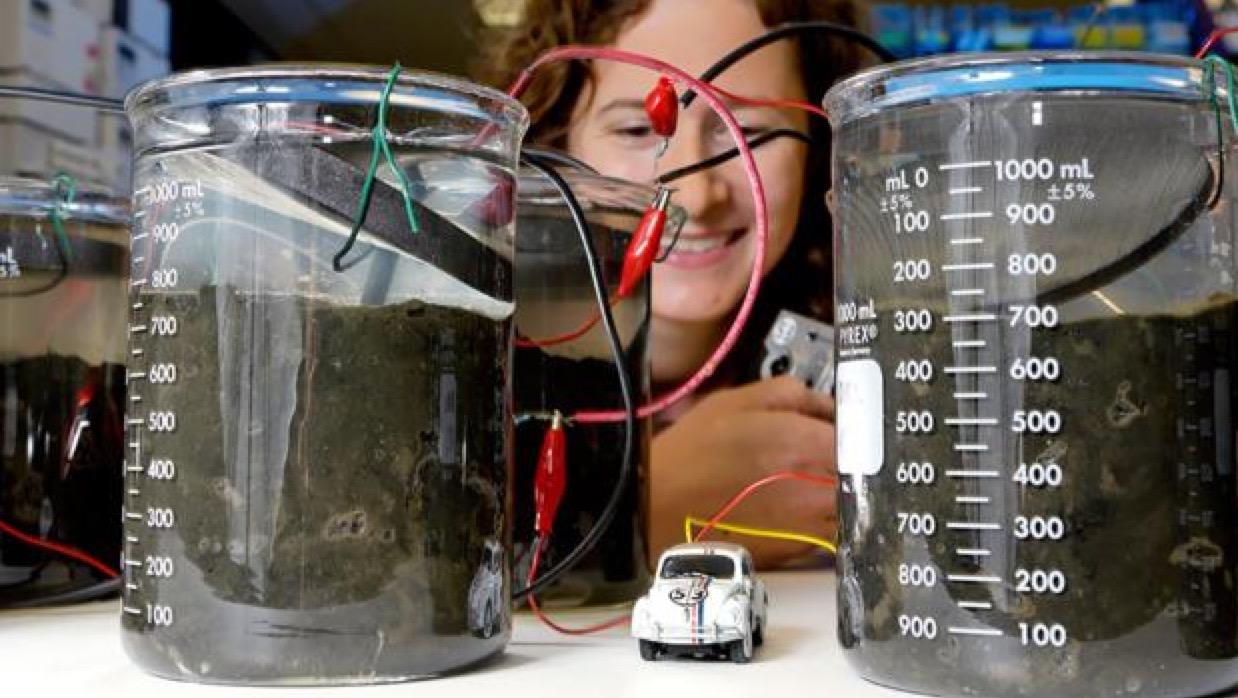 La orina podría ser transformada en electricidad con pilas de combustible microbianas