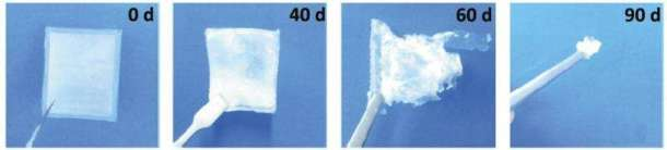 nanogenerador biodegradable