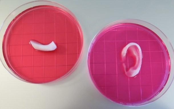 Oreja impresa en 3D