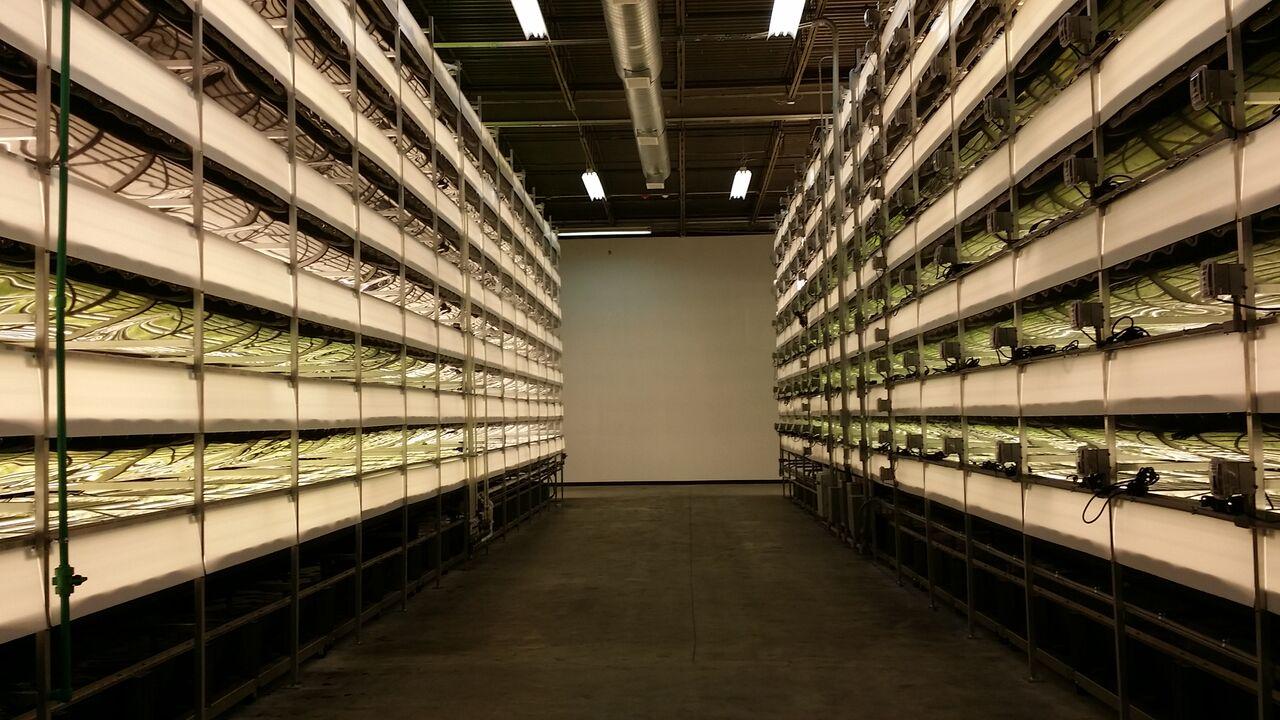 La era de las granjas verticales
