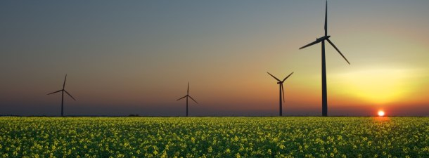 ¿Cómo ha conseguido Costa Rica producir toda su electricidad a partir de energías renovables?
