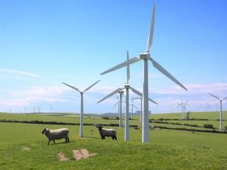 Global Wind Energy Council