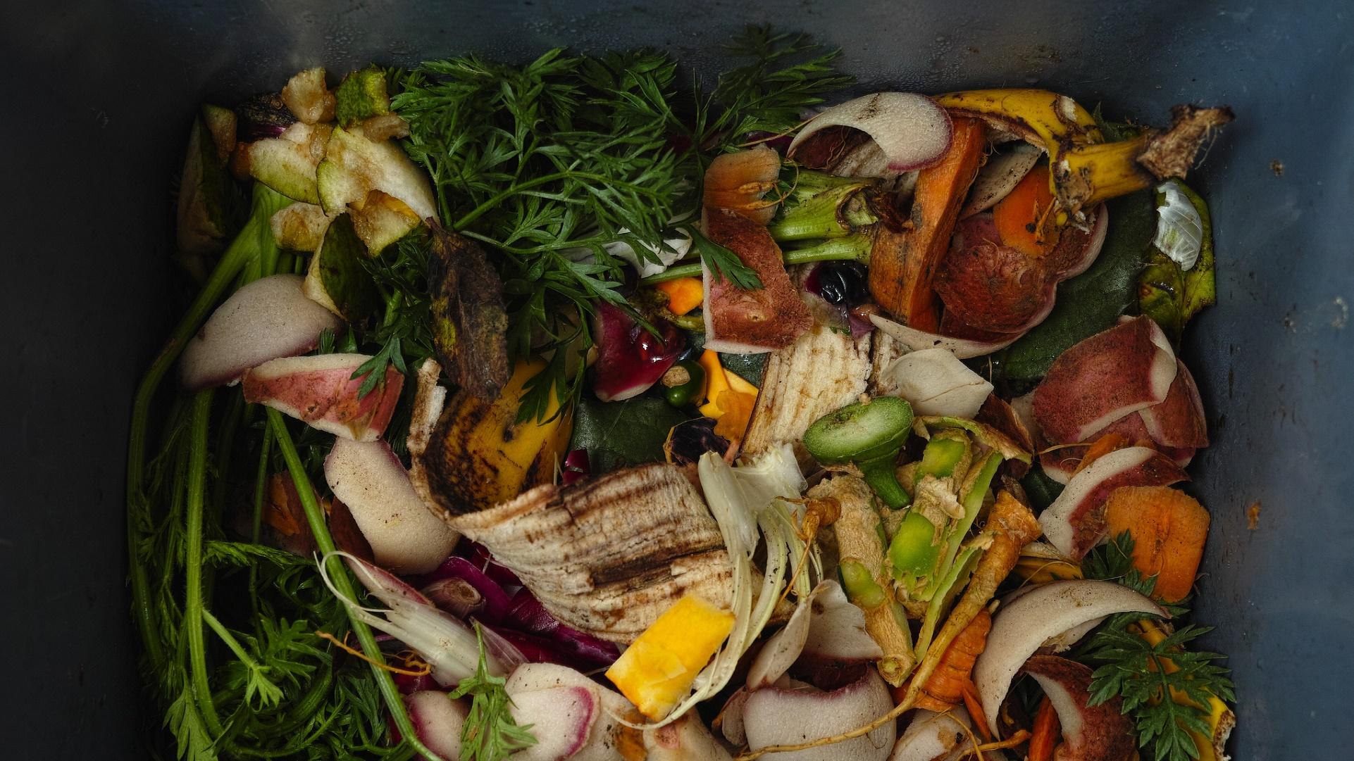 Esta aplicación quiere evitar el desperdicio de alimentos en los supermercados