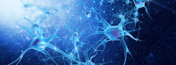 Un nuevo implante cerebral magnético promete una nueva vida funcional a largo plazo