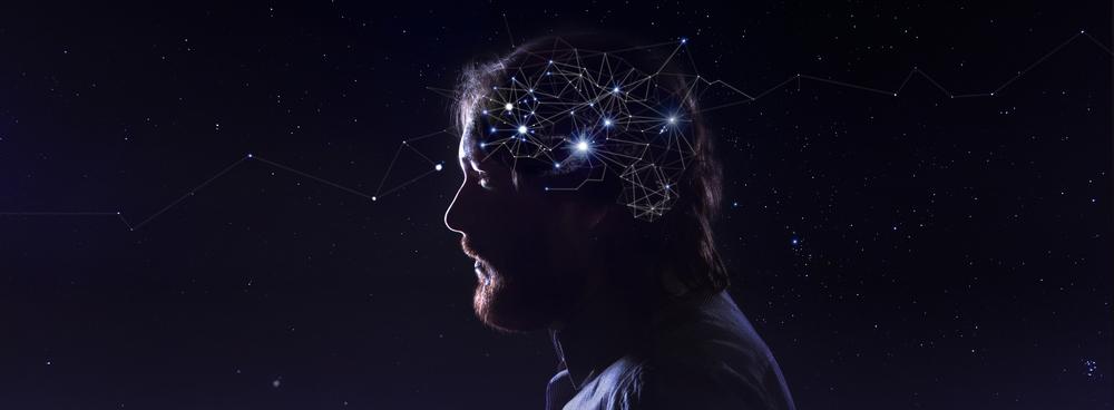 Científicos descubren la forma de subir conocimiento al cerebro