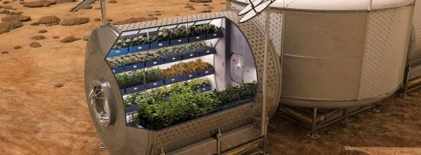 Por qué es tan difícil cultivar alimentos en el espacio