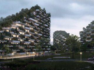 Ciudad-bosque