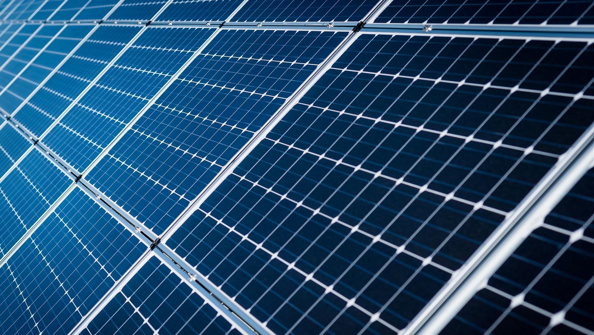 'eTree': el primer árbol solar se planta en Europa