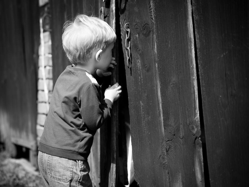 La curiosidad humana se hace artificial