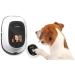 Petchatz, el futuro de las videoconferencias con tu mascota