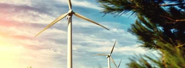 Las empresas, cada vez más implicadas con el medio ambiente