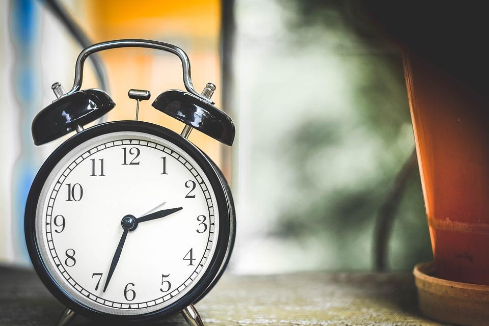 El estudio de los 'relojes biológicos' se lleva el Nobel de Medicina