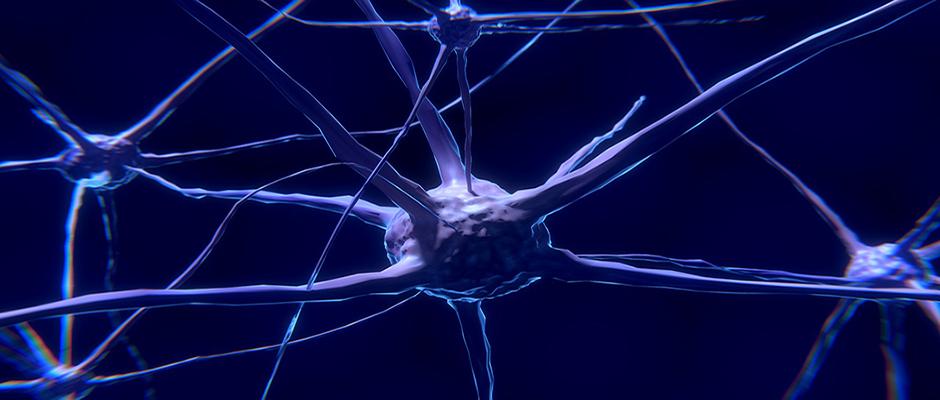 Este material es capaz de olvidar como el cerebro humano