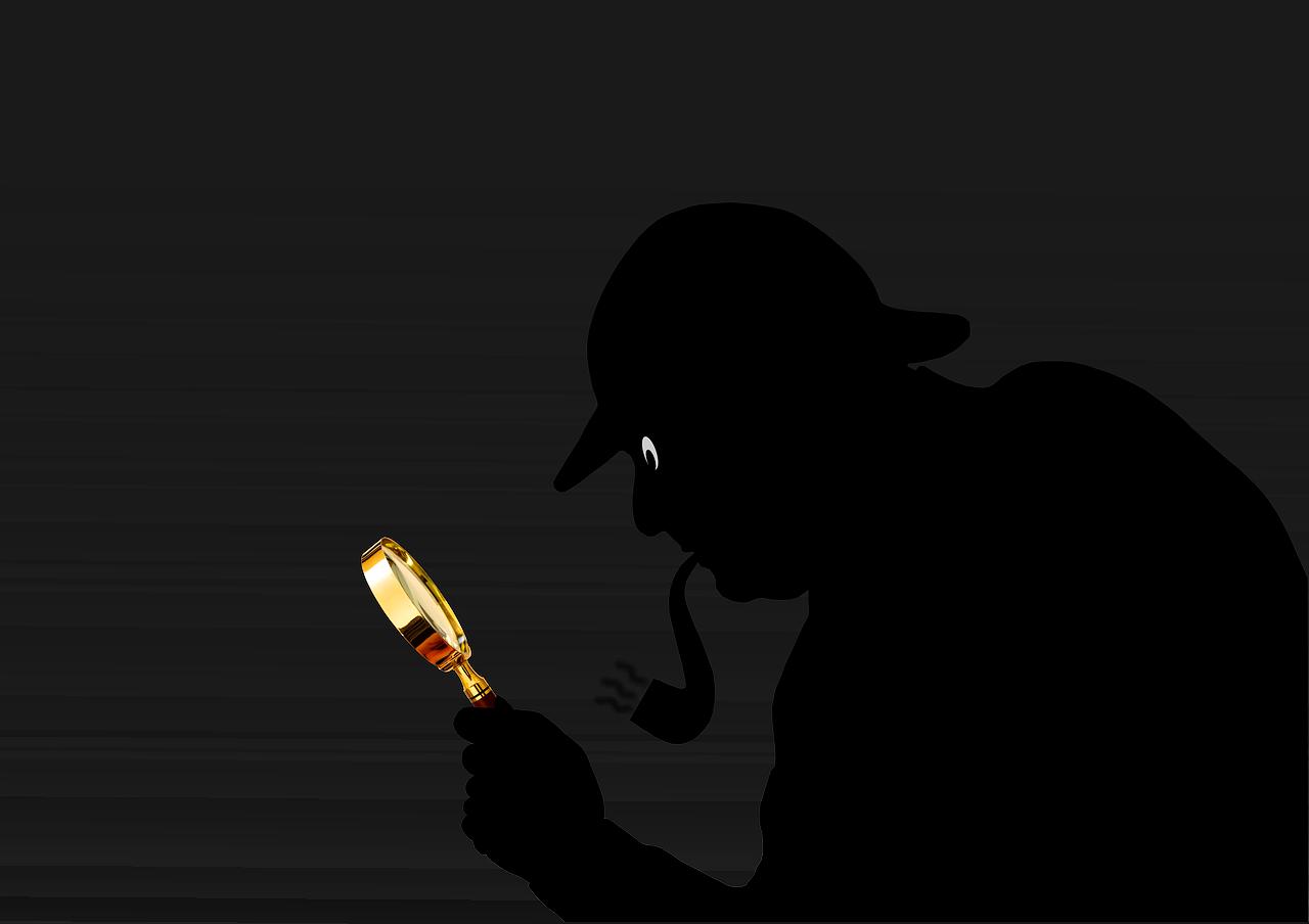 La era de los detectives 2.0