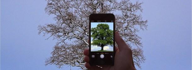 8 apps para cuidar y proteger el medio ambiente