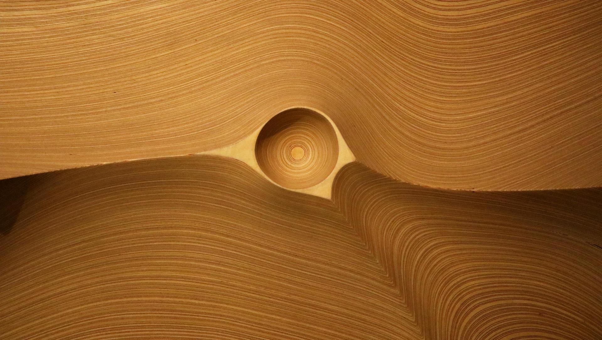 Estos científicos inventan un superaislante térmico con la madera