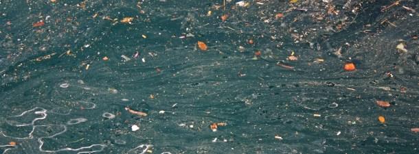El continente de plástico: el rostro de nuestros desperdicios