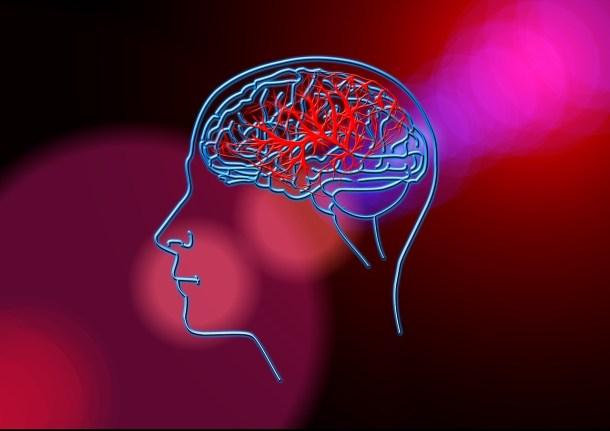 Investigación del cerebro en China