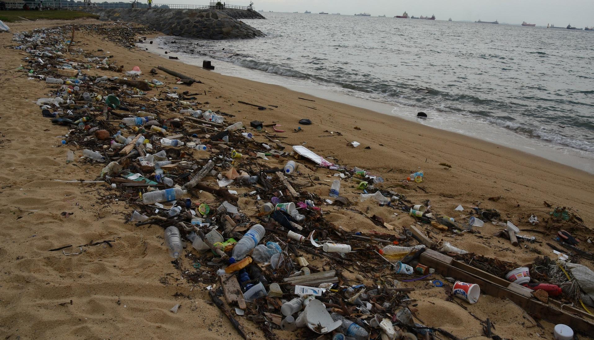 Cómo combatir el problema de la acumulación de plástico