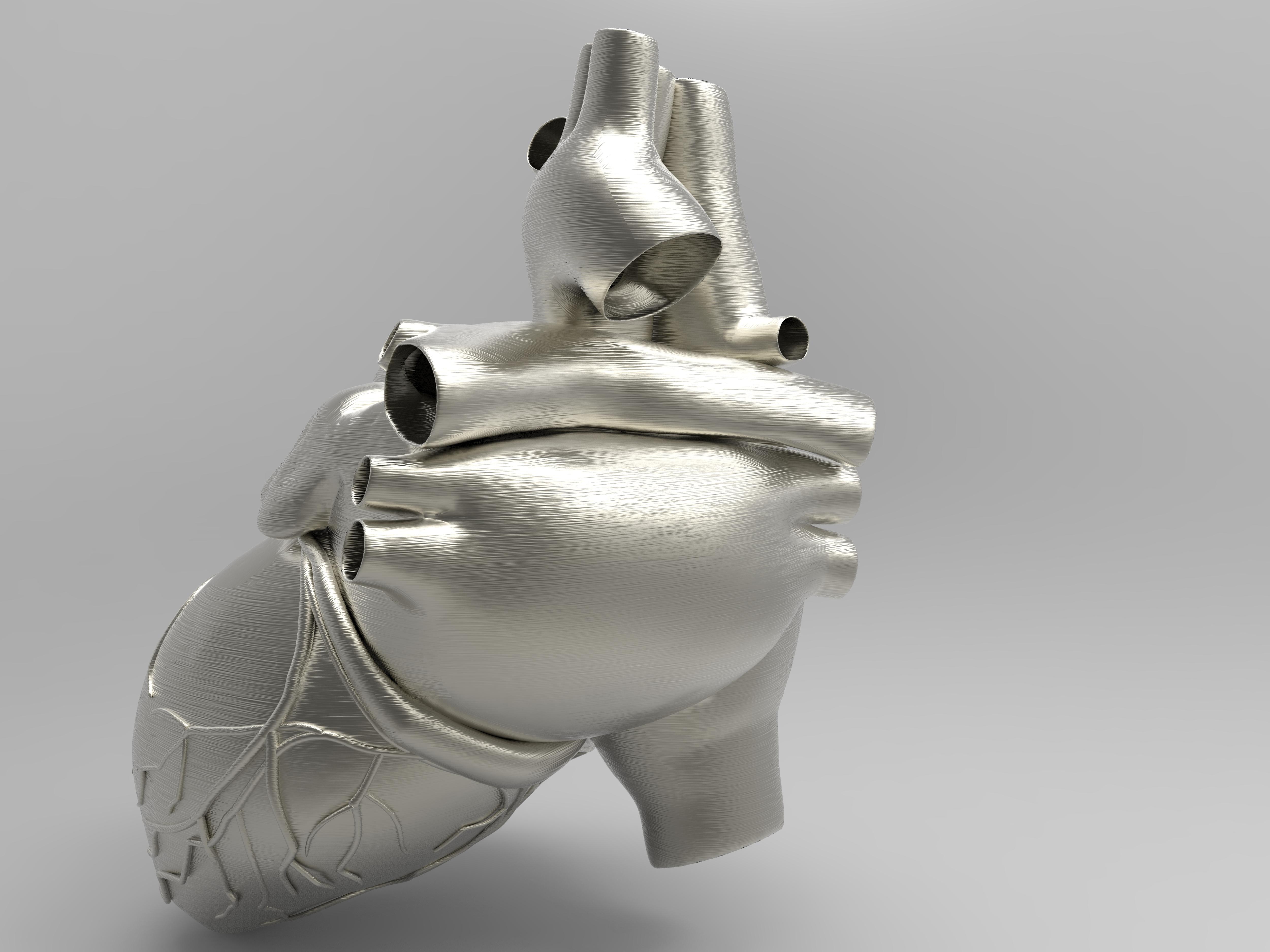 Logran imprimir en 3D partes funcionales de un corazón