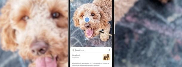 La realidad aumentada de Google Lens, ya disponible en español