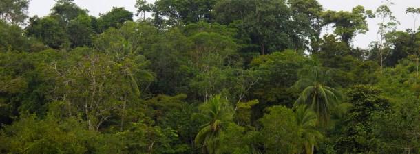 Costa Rica quiere ser el primer país que no utiliza combustibles fósiles