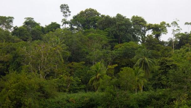 renovables en Costa Rica