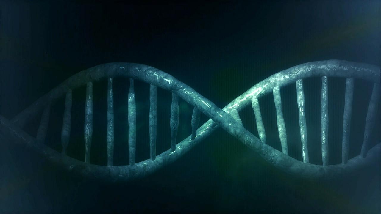 El gen Y masculino es capaz de reducir los riesgos de padecer leucemia
