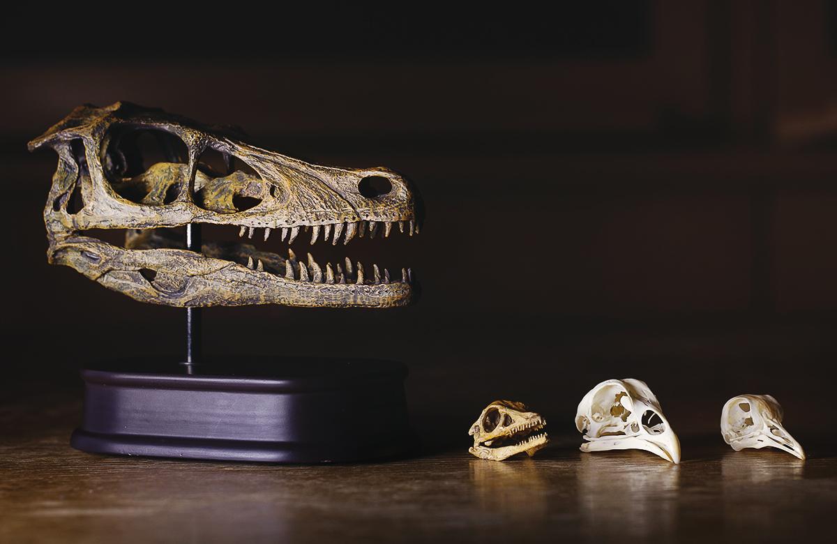 La tecnología permitirá recrear dinosaurios vivos dentro de 10 años