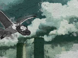 Jannai Flachberger sensores aire paloma cielo contaminación