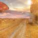 Crean la granja vertical más grande del mundo para combatir la escasez de agua