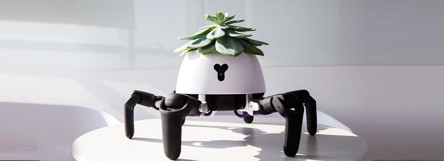 La maceta que adapta el sol a las necesidades de tus plantas