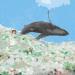 Un nuevo sistema para evitar que el plástico llegue a los océanos