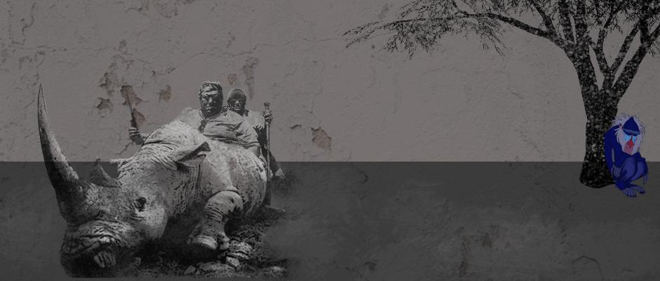Embriones de laboratorio, la última esperanza para salvar al rinoceronte blanco del norte