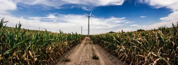 Cómo conseguir que el medio rural sea sostenible gracias a la tecnología
