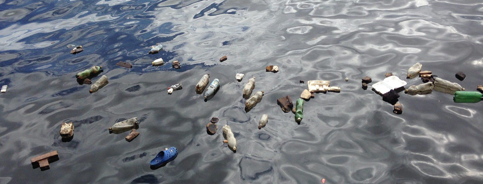 ¿Qué pasaría si los océanos se quedasen sin oxígeno?