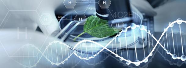 Hidrógeno verde, la solución energética para reducir las emisiones