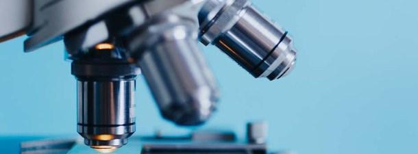 La bioimpresión 3D revoluciona la regeneración de órganos con células propias