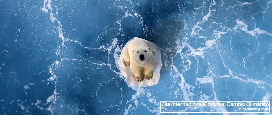 El cambio climático nos concierne a todos