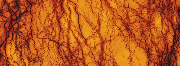 Logran crear vasos sanguíneos implantables mediante impresión 3D