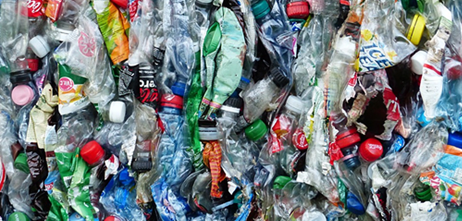 Biotecnología contra la contaminación del plástico
