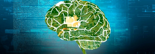 Sensores de grafeno para estudiar el cerebro