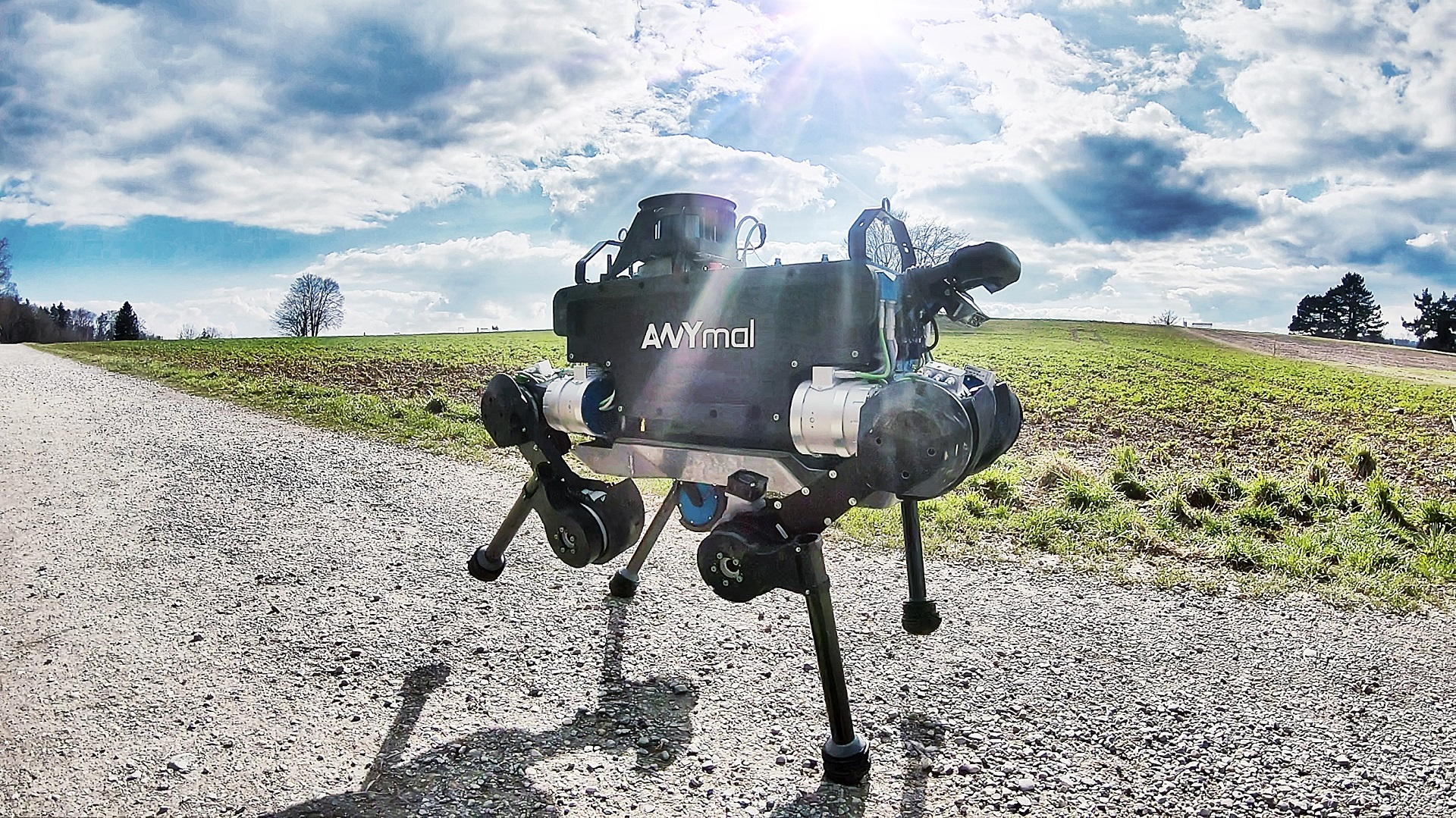 El equilibrio de un robot