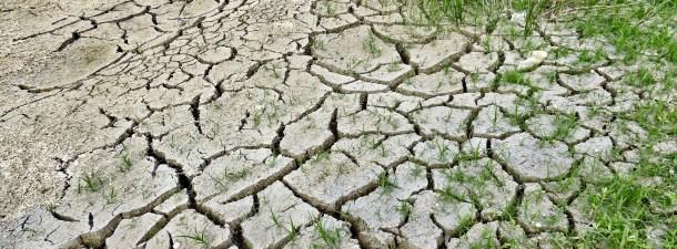 El cambio climático y sus efectos en la salud de la infancia