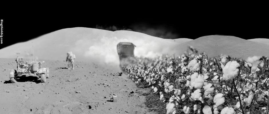 algodón luna
