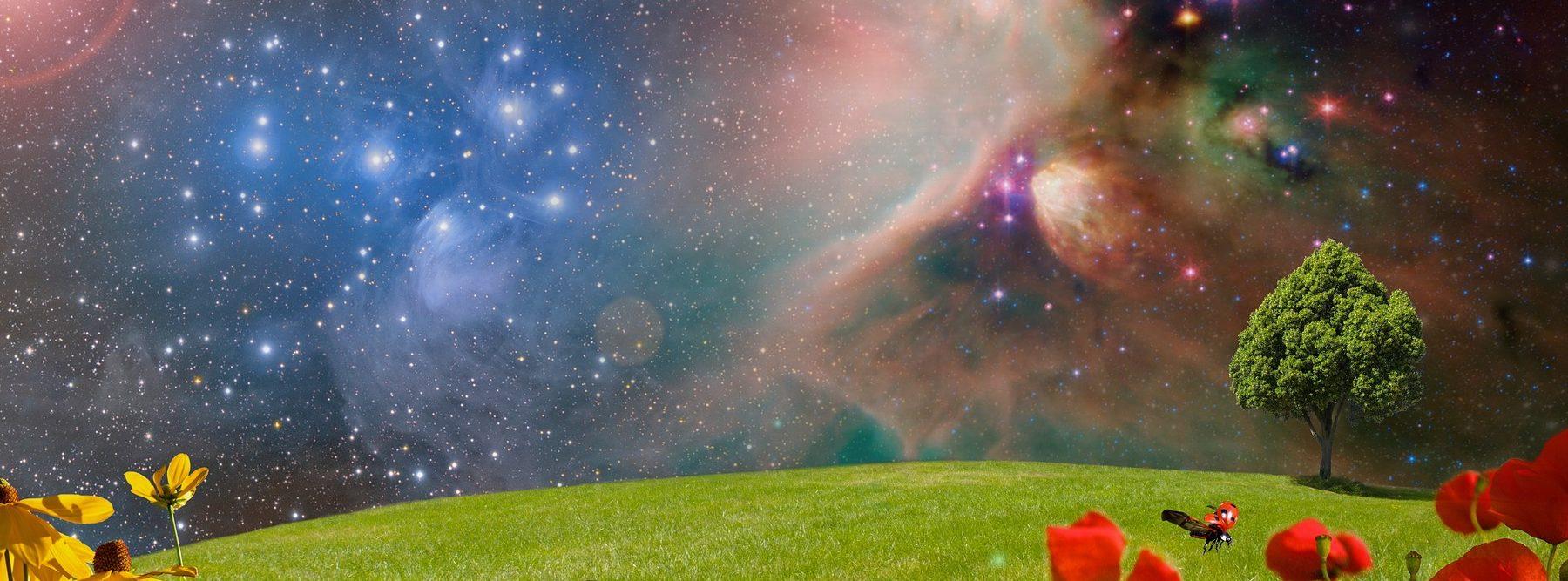 Este nuevo dispositivo óptico podría detectar vida vegetal extraterrestre